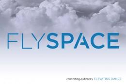 FlySpace