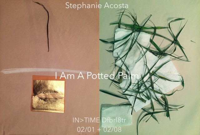 STEPHANIE ACOSTA Double Tone 5 TEXT