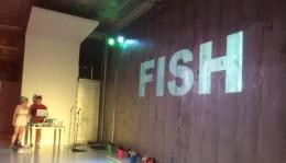 WITCH HAZEL fish
