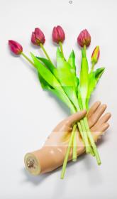 FLOWERS NEW WEB