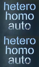 heterohomoauto_webevent